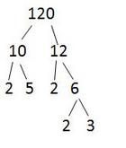 Making a factor Tree for 120
