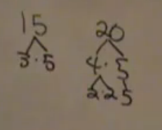 factor tree/15 and 20