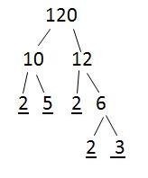 Making a factor Tree