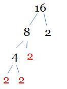 factor tree for 16