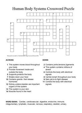 human body crossword puzzle