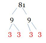 factor tree for 81