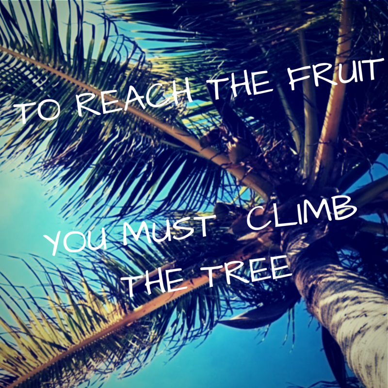 inspirational saying #6/school motivation/to reach the fruit you must climb the tree